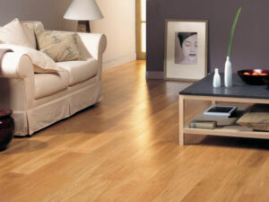 Home wood floor cleaner