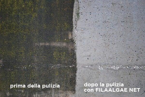 Muri esterni con problemi di alghe muffe e annerimenti - Come pulire i muri esterni di casa ...