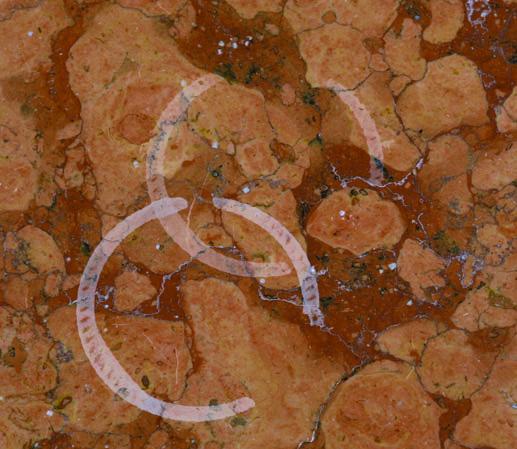 Manchas en la encimera de m rmol las soluciones para for Manchas en el marmol