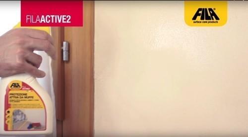Eliminare la muffa dai muri per sempre s grazie a - Come eliminare la muffa dai muri interni ...