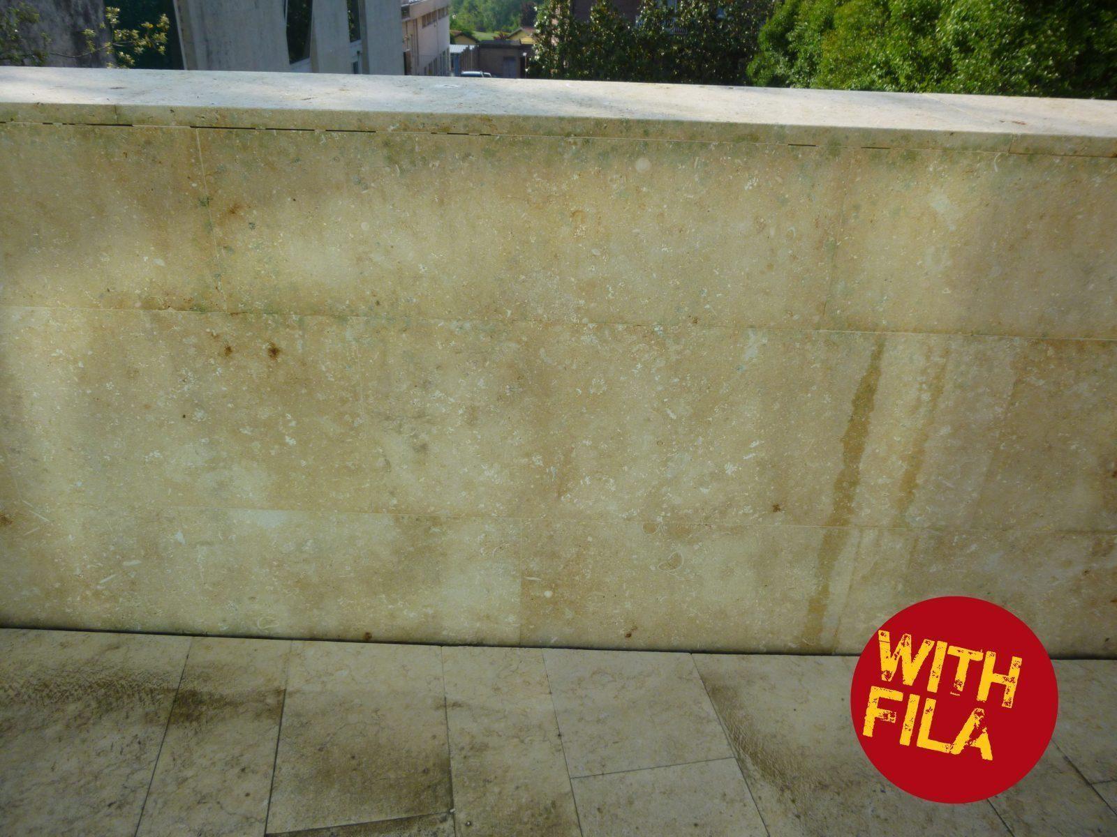 Come rimuovere muschi e licheni da mattonelle e muretti in cemento