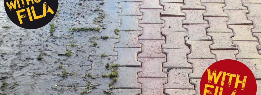 So entfernen Sie Moos und Flechten von Betonplatten und Mauern