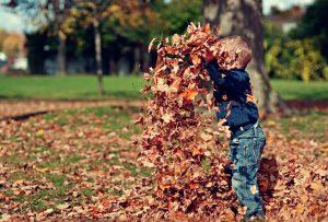 Grondaie-libere-dalle-foglie-FILA