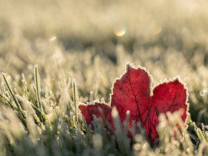 Quando-l-inverno-chiama-deterdek-risponde-FILA