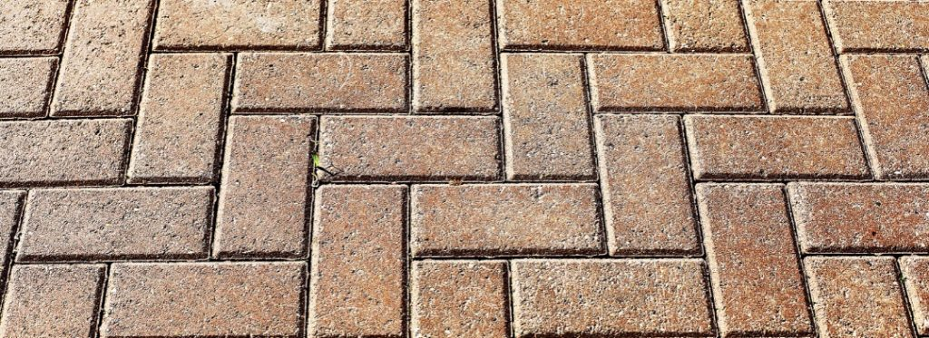 How to clean terracotta outdoors: 3 tips for quick and easy cleaning